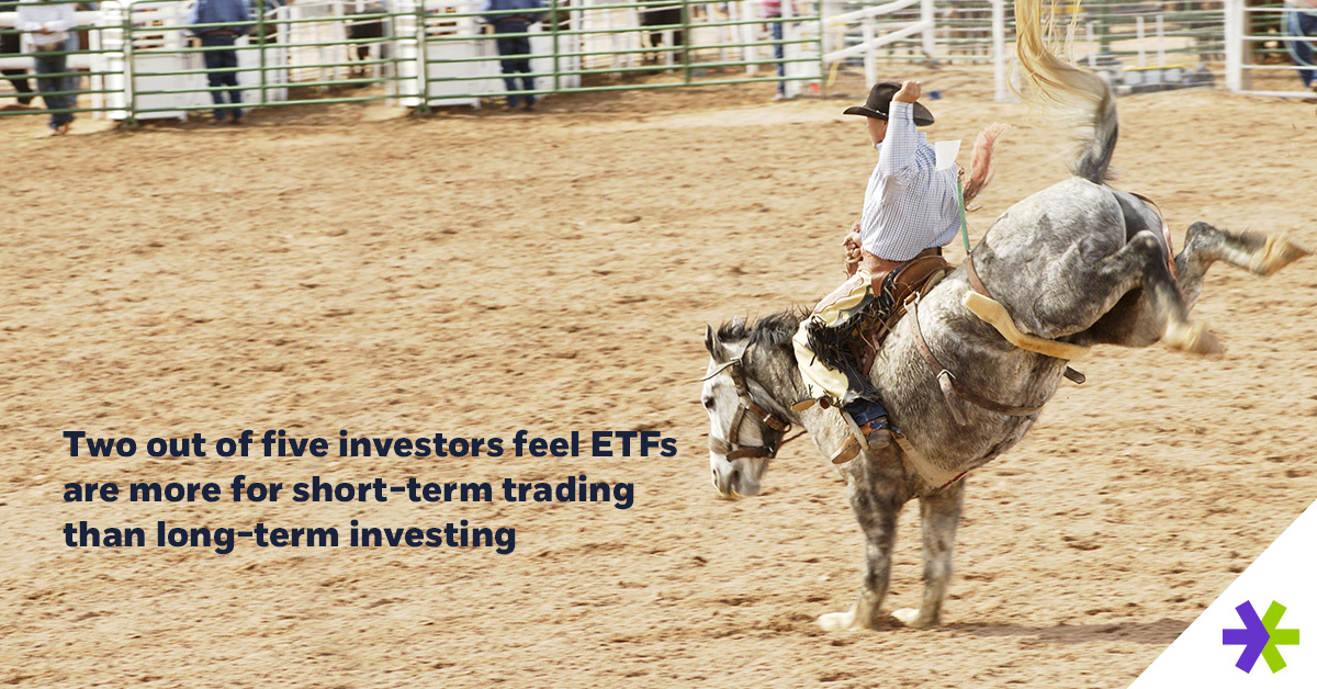 Experienced Investors ETF Study - image