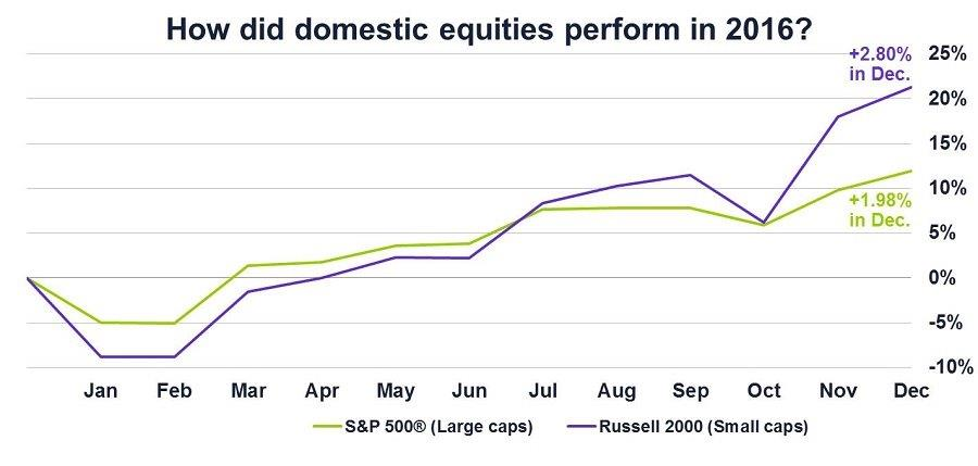 Graph of How domestic equities performed in 2016