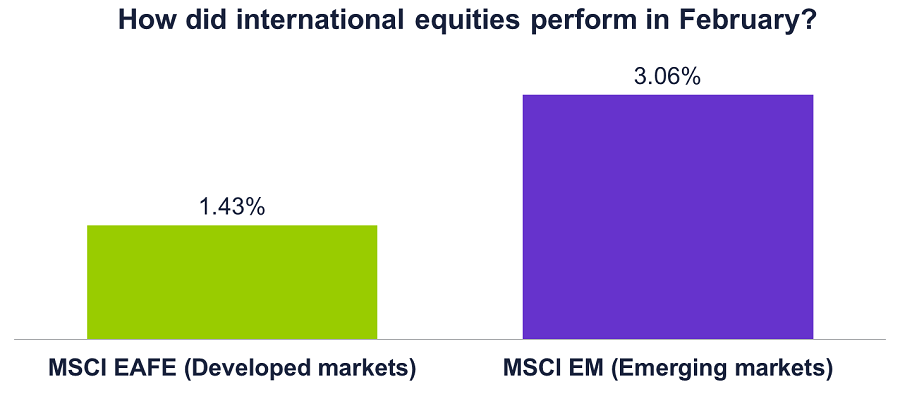 Graph of how international equities performed in Feb 2017