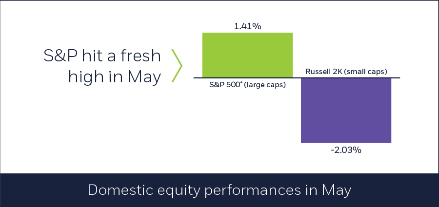 Domestic equity performances in May