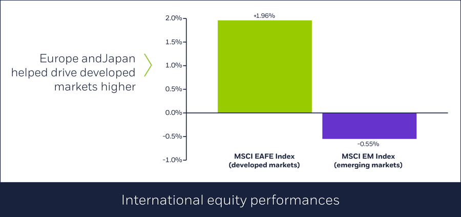 International equity performances