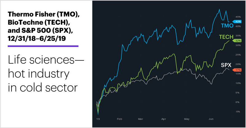 Thermo Fisher (TMO), BioTechne (TECH), and S&P 500 (SPX), 12/31/18–6/25/19. Health care, life sciences price chart. Life sciences—hot industry in cold sector.