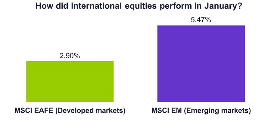 Graph of how international equities performed in Jan 2017